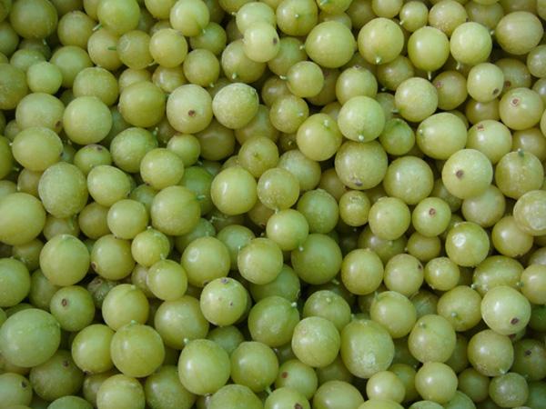 峨莓 (10)